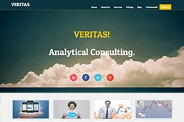 VERITAS! Analytical Consulting